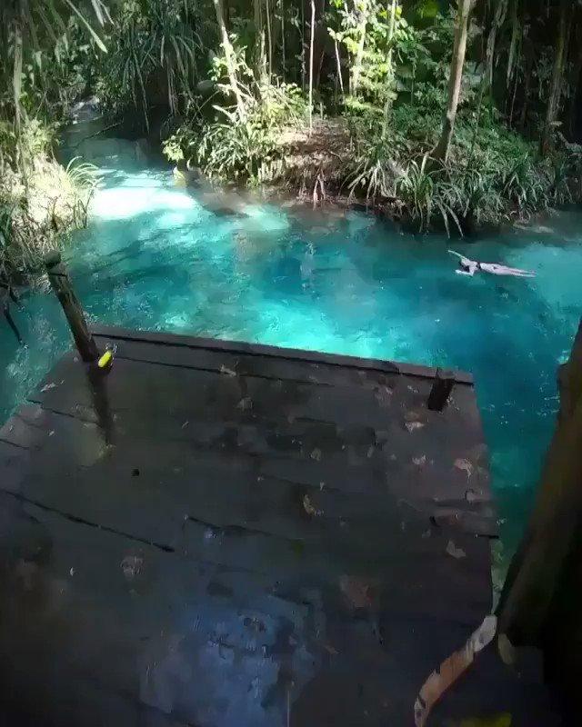 インドネシア ラジャ・アンパット諸島  1度でいいから行ってみたい。  https://t.co/E597XUoSkJ