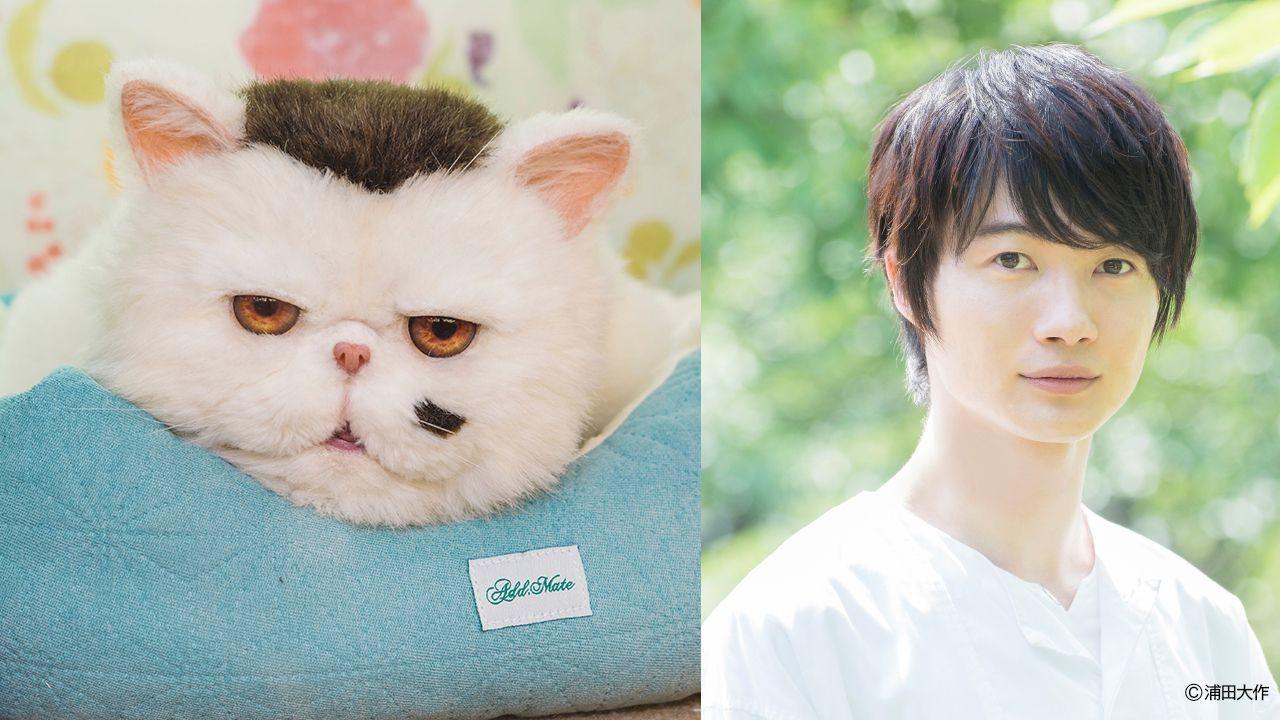 神木隆之介がドラマ『おじさまと猫』にレギュラー出演へ 猫のふくまるの声でテレビ東京ドラマ初出演
