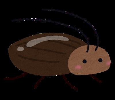 ゴキブリは洗剤かけると死ぬ←これ